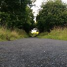 Old Railway Line by Richard Winskill