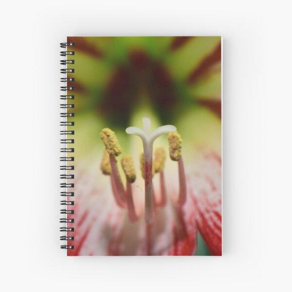 Amaryllis, stigma and stamen Spiral Notebook