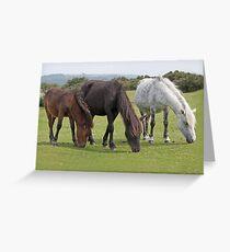 Dartmoor Trio Greeting Card