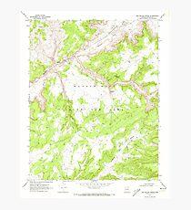 USGS TOPO Map Arizona AZ Red Willow Spring 313076 1970 24000 Photographic Print