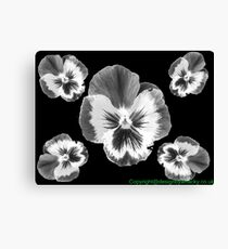 cinq fleur Canvas Print