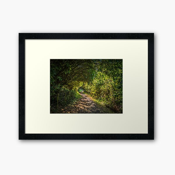 Bush Covered Walking Track Framed Art Print