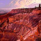 Sunrise At Bryce Canyon by Nancy Richard