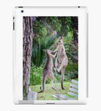 Male Kangaroos Fighting iPad Case/Skin