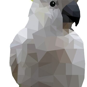 Low Poly Cockatoo Bird by superminx