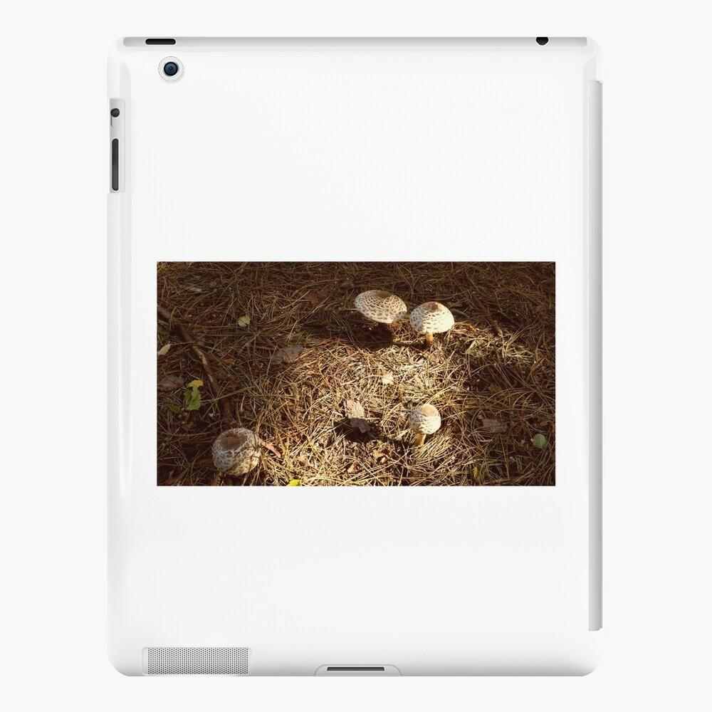 Fairyland iPad-Hülle & Skin