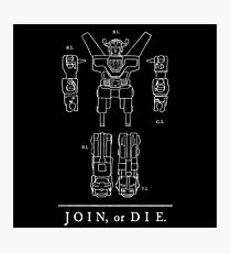 Join or Die Defender Photographic Print