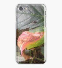 Daily enhancements iPhone Case/Skin