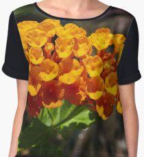 Orange Lantana Women's Chiffon Top