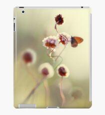Impression in pastel colours iPad Case/Skin