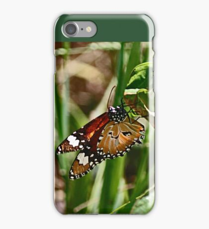 Beneath a Beaut Butterfly iPhone Case/Skin