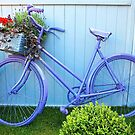 Purple Bicycle by Ludwig Wagner