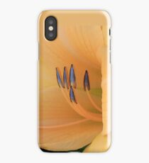 Gentle Arrows 2 iPhone Case/Skin