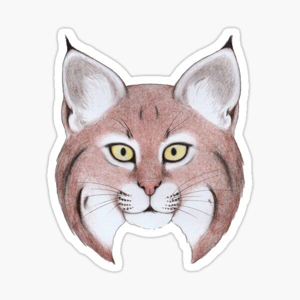 Bobcat (Lynx rufus) Sticker