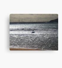 Silver Surfer Canvas Print