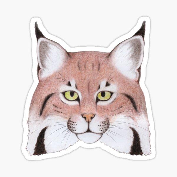 Eurasian Lynx (Lynx lynx) Sticker