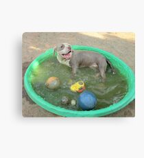 Yes I'm Dirty.....But I'm Having So Much Fun! Canvas Print