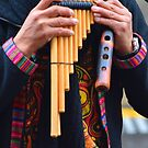 Pan pipes by Peter Krause