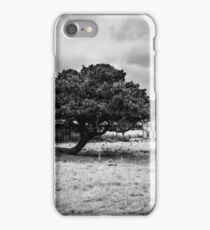 Country property iPhone Case/Skin
