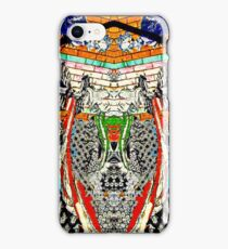 Art on the Walls iPhone Case/Skin