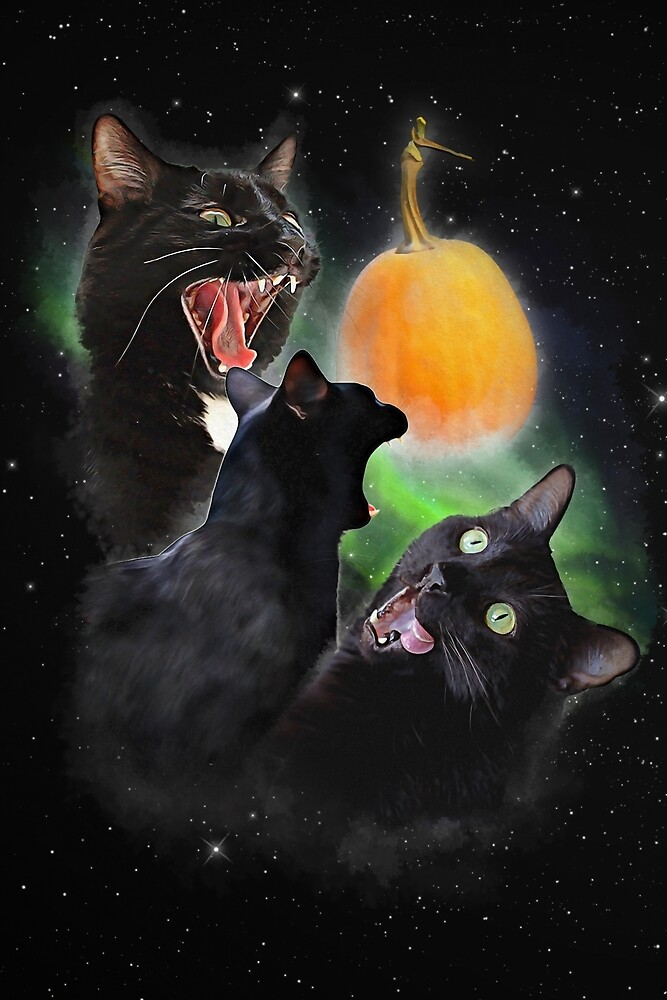 3 Yawning Cats by oneksy