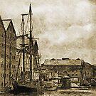 Tall Ship, Gloucester Docks, UK by David Carton