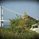 Severn bridge, and the old Aust Ferry by David Carton