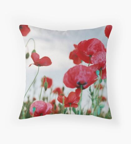 Field of Poppies Against Grey Sky  Throw Pillow