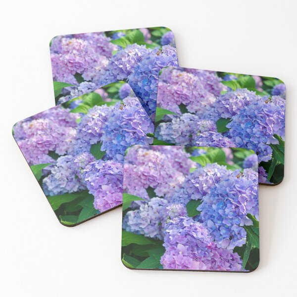Indigo Hydrangeas Coasters (Set of 4)