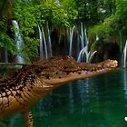 Crocodile partially under water by TJ Baccari Photography