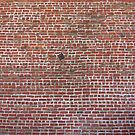 Brick Wall with Earthquake Retrofitting by Steve Campbell