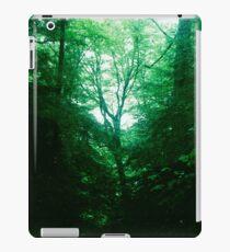 Emerald Glade iPad Case/Skin