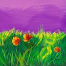 Mohnblumen von rauschsinnig