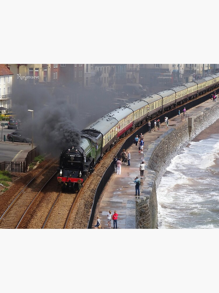 LNER 60163 'Tornado' at Dawlish by Rorymacve
