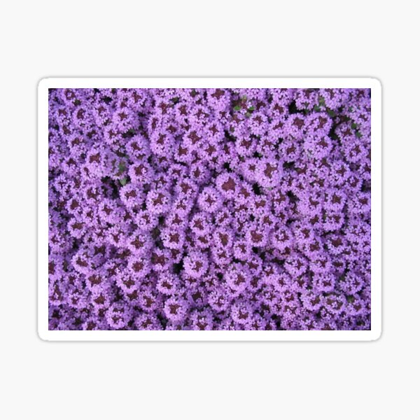 Lilac Floral Design Products Sticker