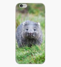 Wombat during the day iPhone Case