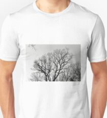 Beautiful Tree T-Shirt