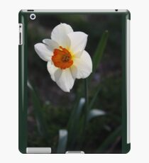 White Daffodil iPad Case/Skin