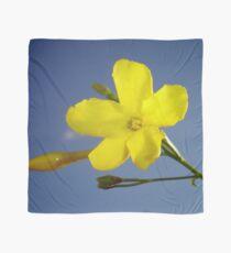 Yellow Jasmine Flower and Bud Against Blue Sky Scarf