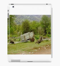 Escena rural... iPad-Hülle & Klebefolie