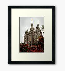 Salt Lake City Temple Angle Framed Print