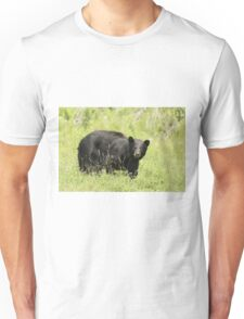 Black bear in a green field Unisex T-Shirt