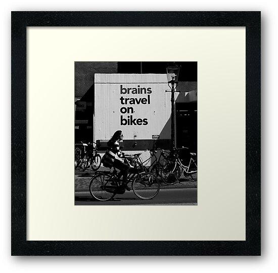 Bikes by Dan Algina