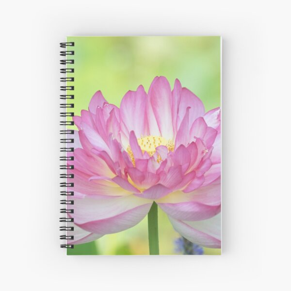 Holy Love Lotus Spiral Notebook