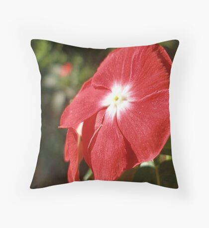 Close Up Of A Red Busy Lizzie Flower Throw Pillow