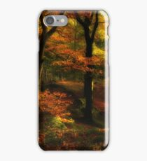 Penny Rock Woods iPhone Case/Skin