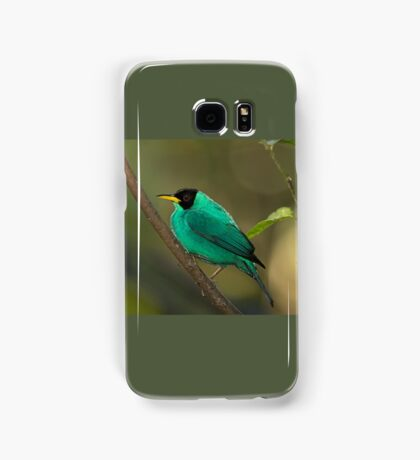 Green Honeycreeper - Costa Rica Samsung Galaxy Case/Skin