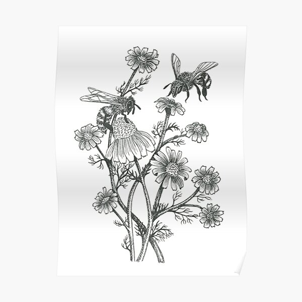 bees and chamomile on caramel background Classic T-Shirt Poster