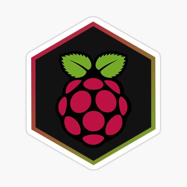 Raspberry Pi Hexagon Sticker