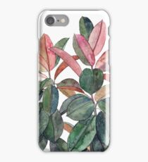 Rubber Plant iPhone Case/Skin